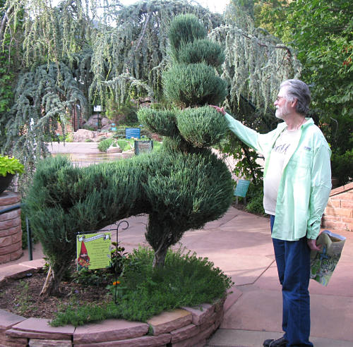 Mark With Topiary In Red Butte Garden